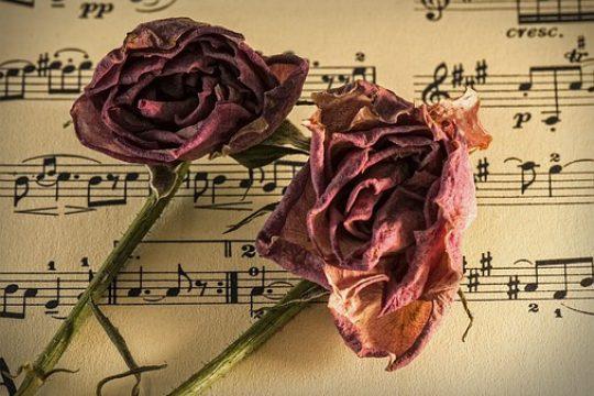 sheet-music-944796__340
